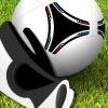 Professional Goalkeeper: ...